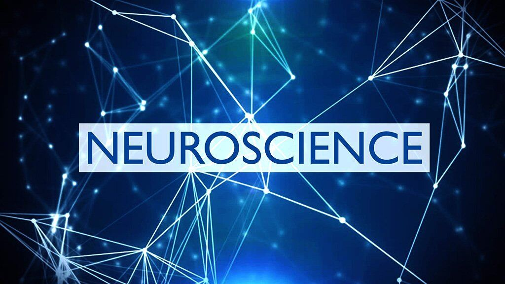 Fun&fficient Learning NeuroScience - A-GamePartner